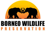 Borneo Wildlife Preservation